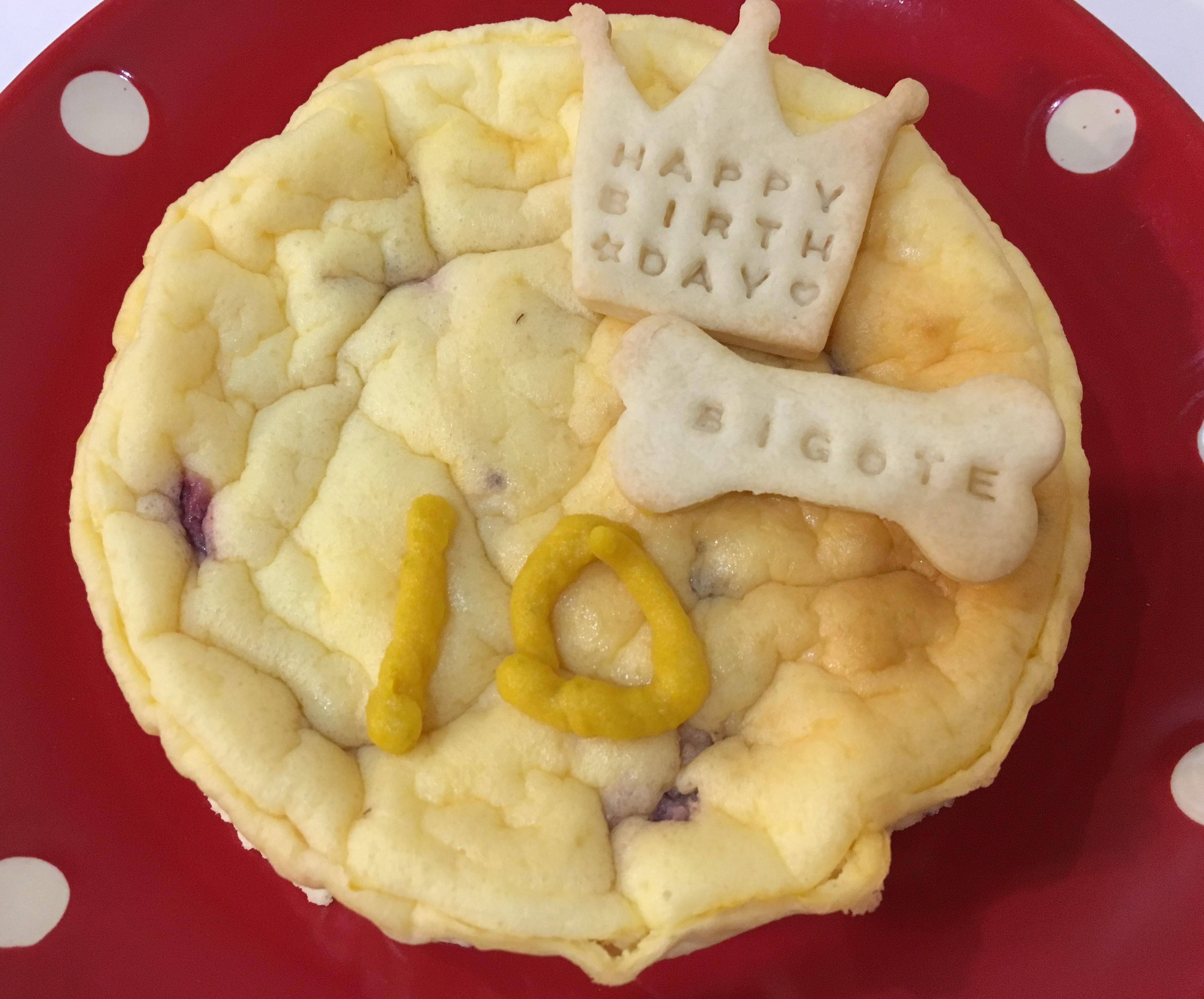 季節のフルーツ入りヨーグルトチーズケーキ ※誕生日ケーキ もっとおおきいものも作れます